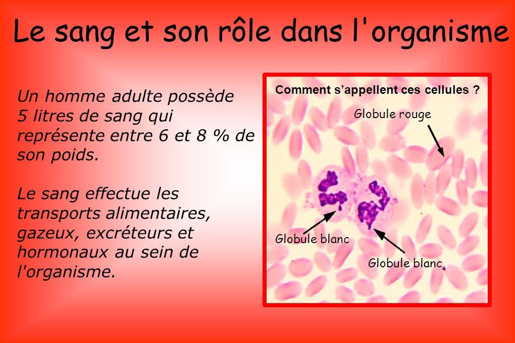 COMPOSITION DU SANG : Le sang est composé de globules rouges (= hématies) qui transportent le dioxygène des poumons dans tous le corps.