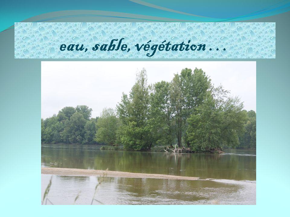 eau, sable, végétation …