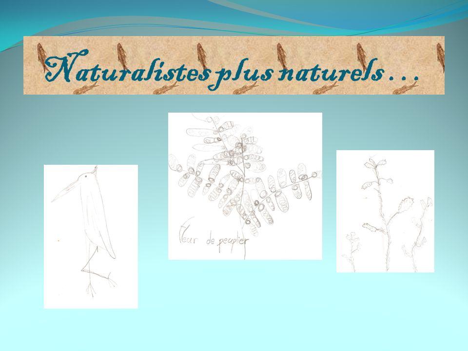Naturalistes plus naturels …