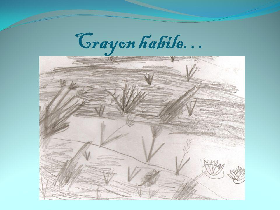 Crayon habile…