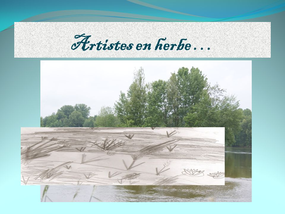 Artistes en herbe …