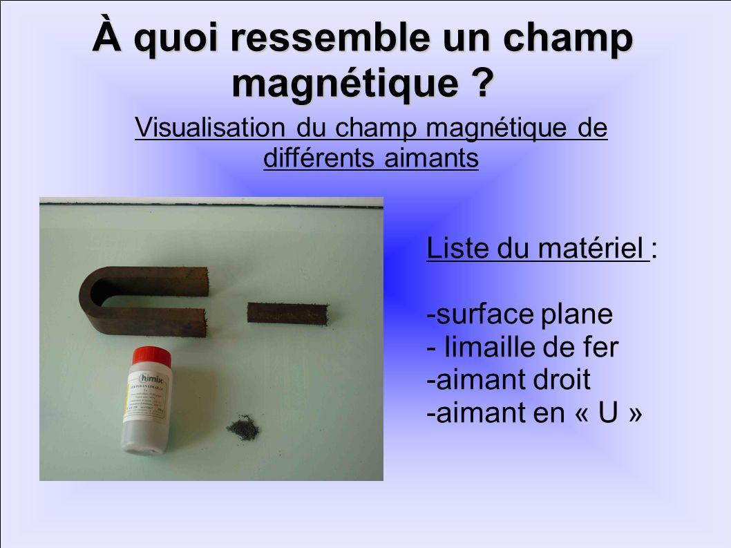À quoi ressemble un champ magnétique ? Liste du matériel : -surface plane - limaille de fer -aimant droit -aimant en « U » Visualisation du champ magn