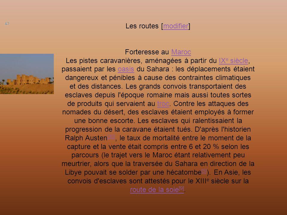 Les routes [modifier]modifier Forteresse au MarocMaroc Les pistes caravanières, aménagées à partir du IX e siècle, passaient par les oasis du Sahara : les déplacements étaient dangereux et pénibles à cause des contraintes climatiques et des distances.