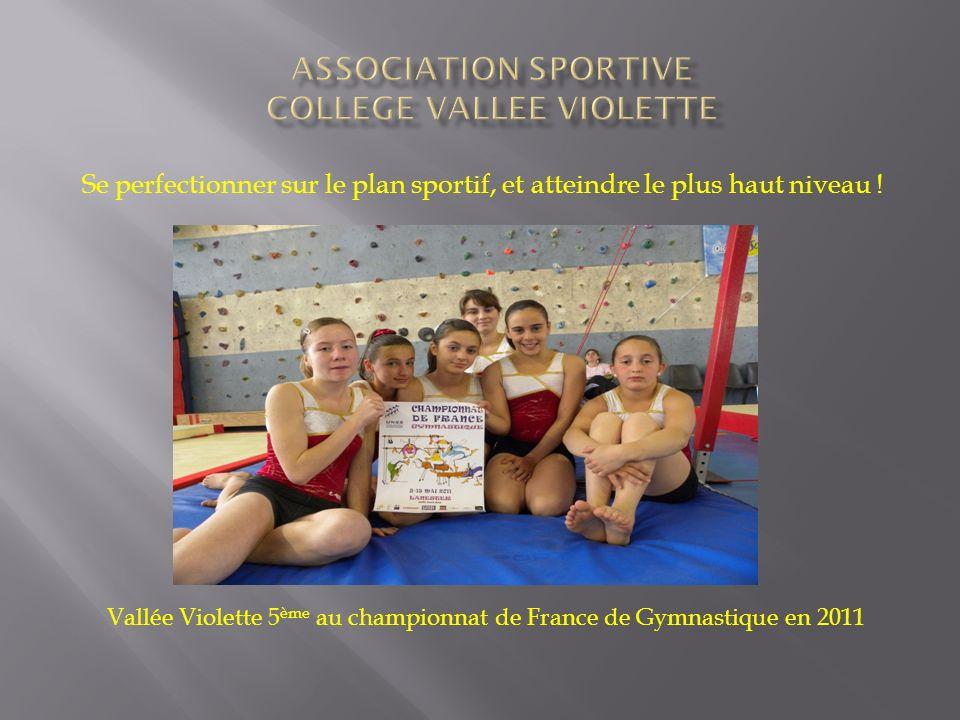 Se perfectionner sur le plan sportif, et atteindre le plus haut niveau ! Photo des élèves Vallée Violette 5 ème au championnat de France de Gymnastiqu