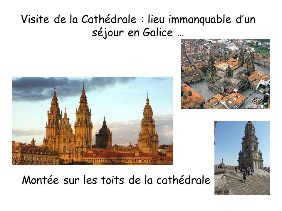 Visite de la Cathédrale : lieu immanquable dun séjour en Galice … Montée sur les toits de la cathédrale