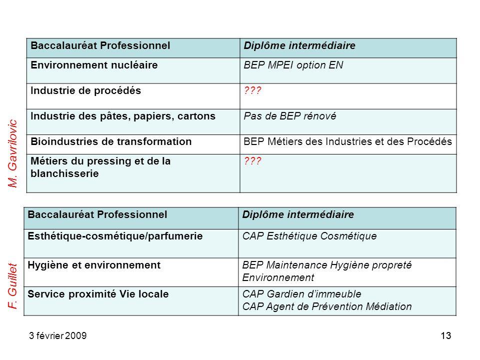 133 février 200913 Baccalauréat ProfessionnelDiplôme intermédiaire Environnement nucléaireBEP MPEI option EN Industrie de procédés??? Industrie des pâ