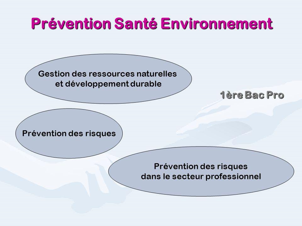Tale Bac Pro Prévention Santé Environnement Cadre réglementaire de la prévention dans lentreprise Effets physiopathologiques des risques professionnels et prévention Approche par le risque Approche par laccident