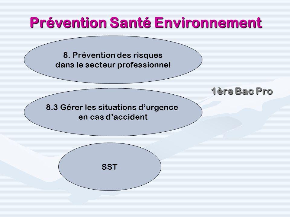 Prévention Santé Environnement Au collège : PCS1 Prévention et secours civiques de niveau 1 PCS1 SST Au LP en CAP : SST Recyclage SST 1ère Bac Pro Tale Bac Pro
