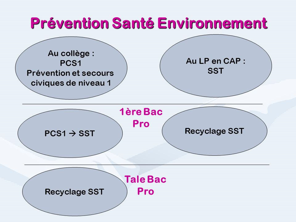 « Passerelle » PSC1/SST« Passerelle » PSC1/SST Recyclage SSTRecyclage SST Prévention Santé Environnement PCS1 SST Recyclage SST « Passerelle » : 4 h pour 10 apprenants 4 h pour le recyclage 10 apprenants.