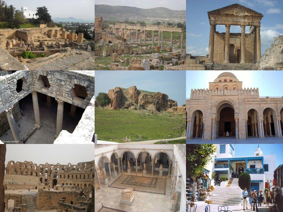 Carthage ( Carthago ) Carthage se compose de trois lieux principaux : - Le Tophet est une nécropole ou cimetière d enfants (sacrifiés?) où l on retrouva 20 000 stèles.