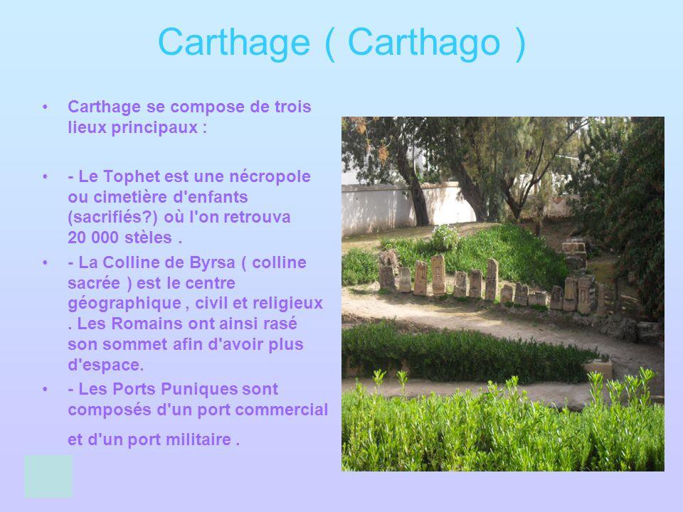 Carthage ( Carthago ) Carthage se compose de trois lieux principaux : - Le Tophet est une nécropole ou cimetière d'enfants (sacrifiés?) où l'on retrou