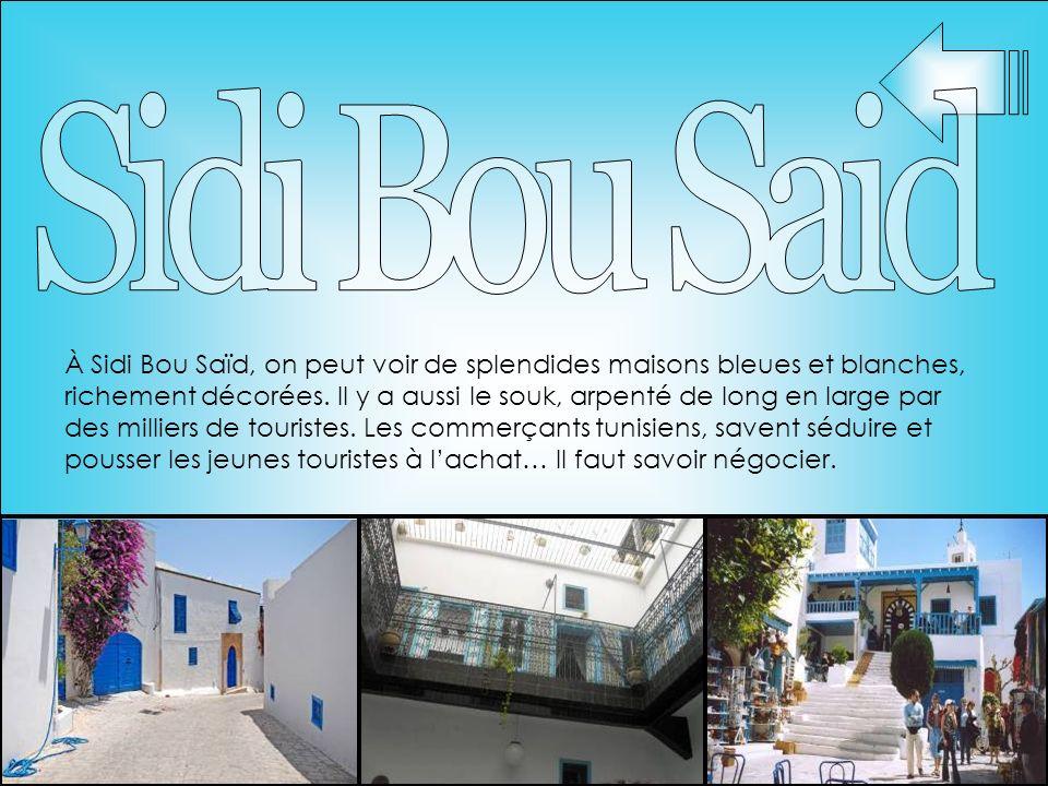 À Sidi Bou Saïd, on peut voir de splendides maisons bleues et blanches, richement décorées. Il y a aussi le souk, arpenté de long en large par des mil