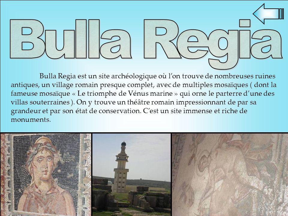 Bulla Regia est un site archéologique où lon trouve de nombreuses ruines antiques, un village romain presque complet, avec de multiples mosaïques ( do