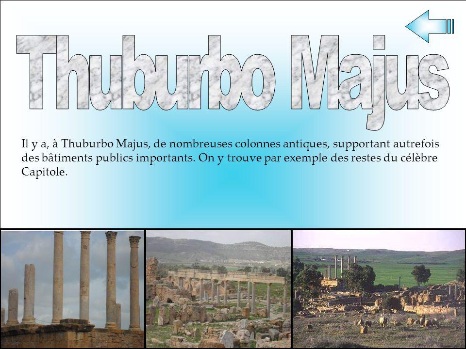 Il y a, à Thuburbo Majus, de nombreuses colonnes antiques, supportant autrefois des bâtiments publics importants. On y trouve par exemple des restes d