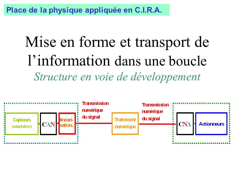 Mise en forme et transport de linformation dans une boucle Structure en voie de développement Place de la physique appliquée en C.I.R.A.
