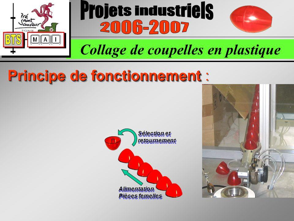 Collage de coupelles en plastique Principe de fonctionnement Principe de fonctionnement : Sélection et retournement Alimentation Pièces femelles