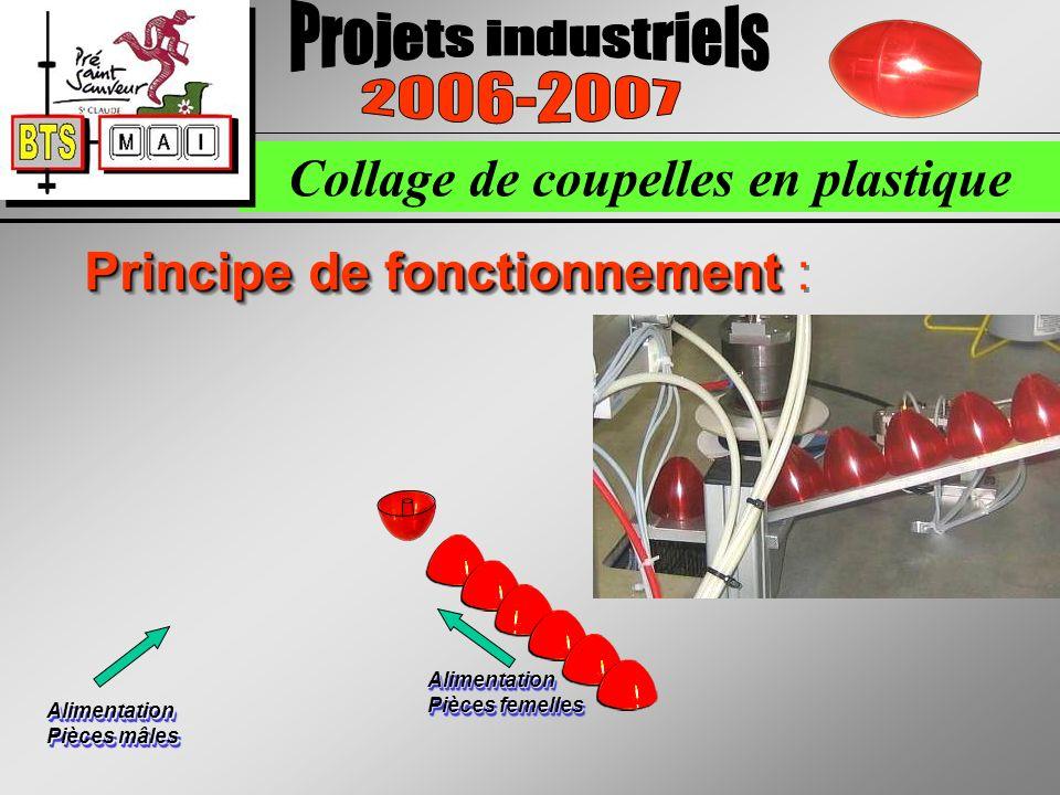 Collage de coupelles en plastique Principe de fonctionnement Principe de fonctionnement : Alimentation Pièces femelles Alimentation Pièces mâles