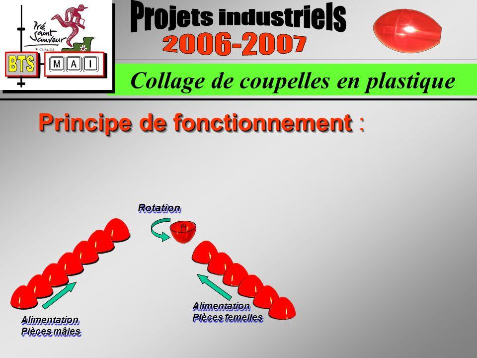 Collage de coupelles en plastique Principe de fonctionnement Principe de fonctionnement : Alimentation Pièces femelles Alimentation Pièces mâles RotationRotation