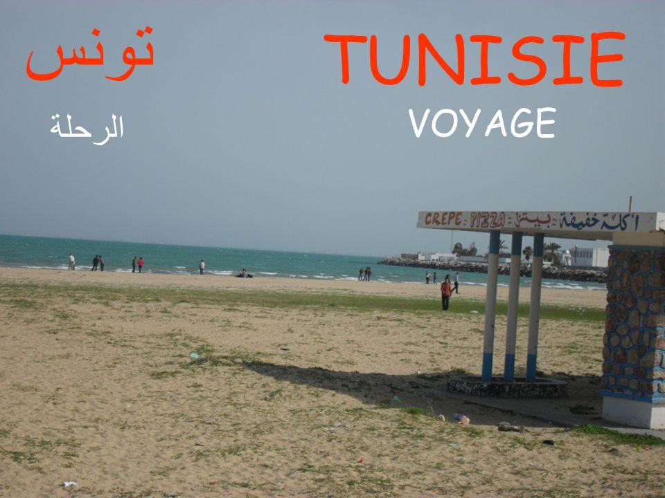 VOYAGE TUNISIE تونس الرحلة
