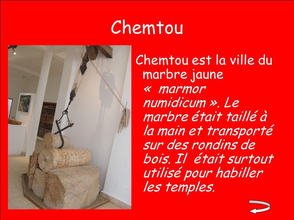 Chemtou Chemtou est la ville du marbre jaune « marmor numidicum ». Le marbre était taillé à la main et transporté sur des rondins de bois. Il était su