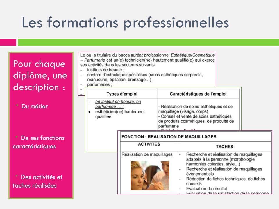 Les formations professionnelles Pour chaque diplôme, une description : · Du métier - · De ses fonctions caractéristiques - · Des activités et taches r