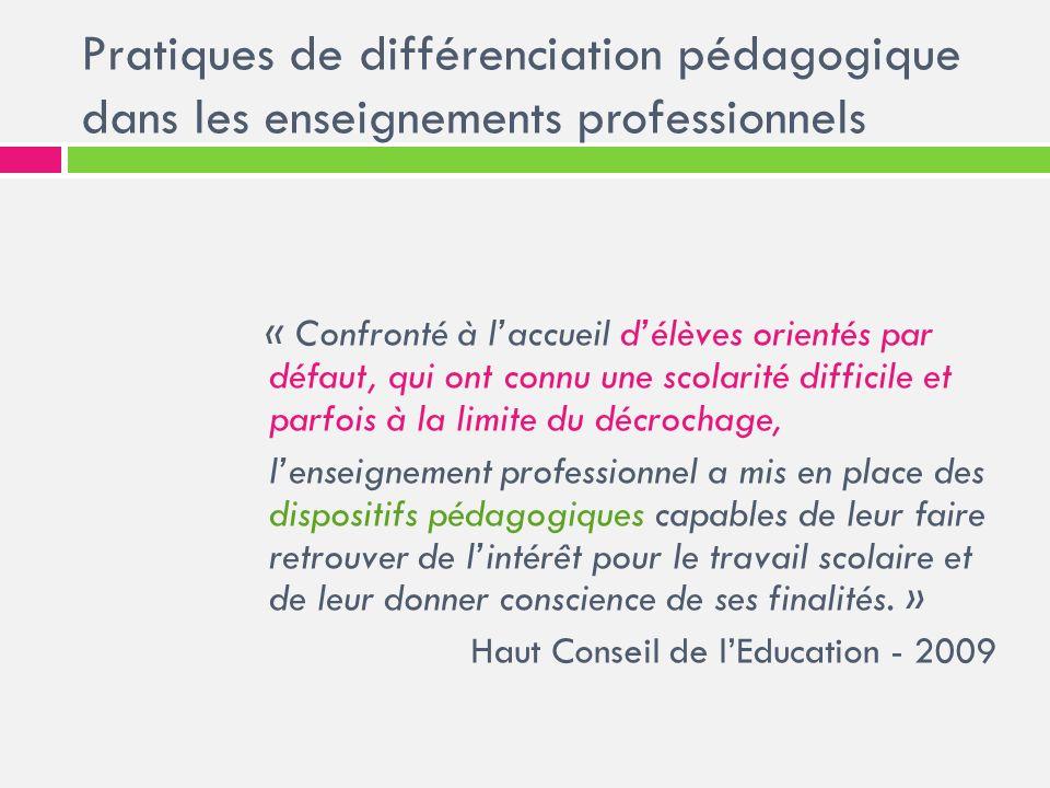 Pratiques de différenciation pédagogique dans les enseignements professionnels Les élèves des LP Les formations dispensées et les « dispositifs pédagogiques » spécifiques Les pratiques de différenciation pédagogique