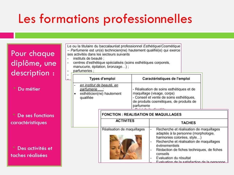 Les formations professionnelles Pour chaque diplôme, une description : · Du métier - · De ses fonctions caractéristiques - · Des activités et taches réalisées