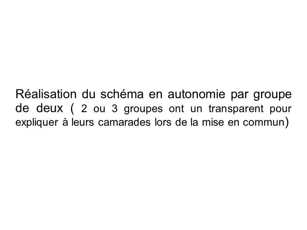 Réalisation du schéma en autonomie par groupe de deux ( 2 ou 3 groupes ont un transparent pour expliquer à leurs camarades lors de la mise en commun )