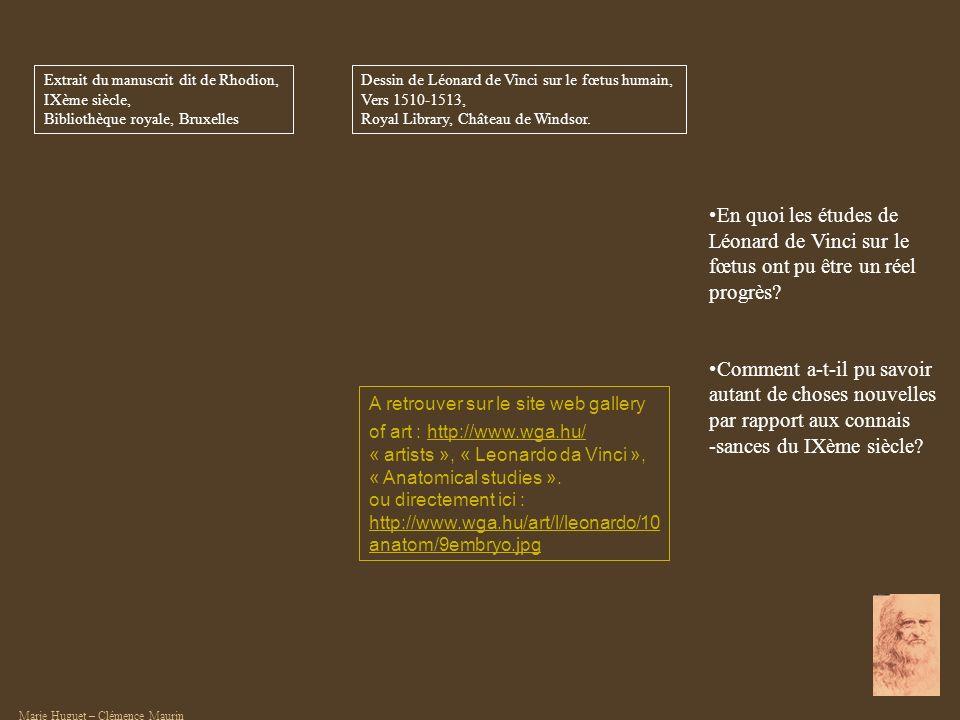 A retrouver sur le site web gallery of art : http://www.wga.hu/http://www.wga.hu/ « artists », « Leonardo da Vinci », « Anatomical studies ». ou direc