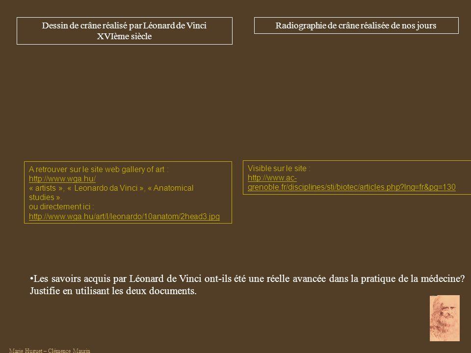 Visible sur le site : http://www.ac- grenoble.fr/disciplines/sti/biotec/articles.php?lng=fr&pg=130 A retrouver sur le site web gallery of art : http:/