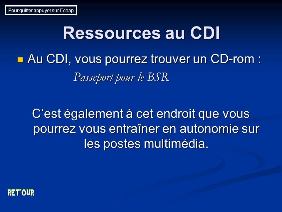 Ressources au CDI Au CDI, vous pourrez trouver un CD-rom : Au CDI, vous pourrez trouver un CD-rom : Passeport pour le BSR Cest également à cet endroit que vous pourrez vous entraîner en autonomie sur les postes multimédia.