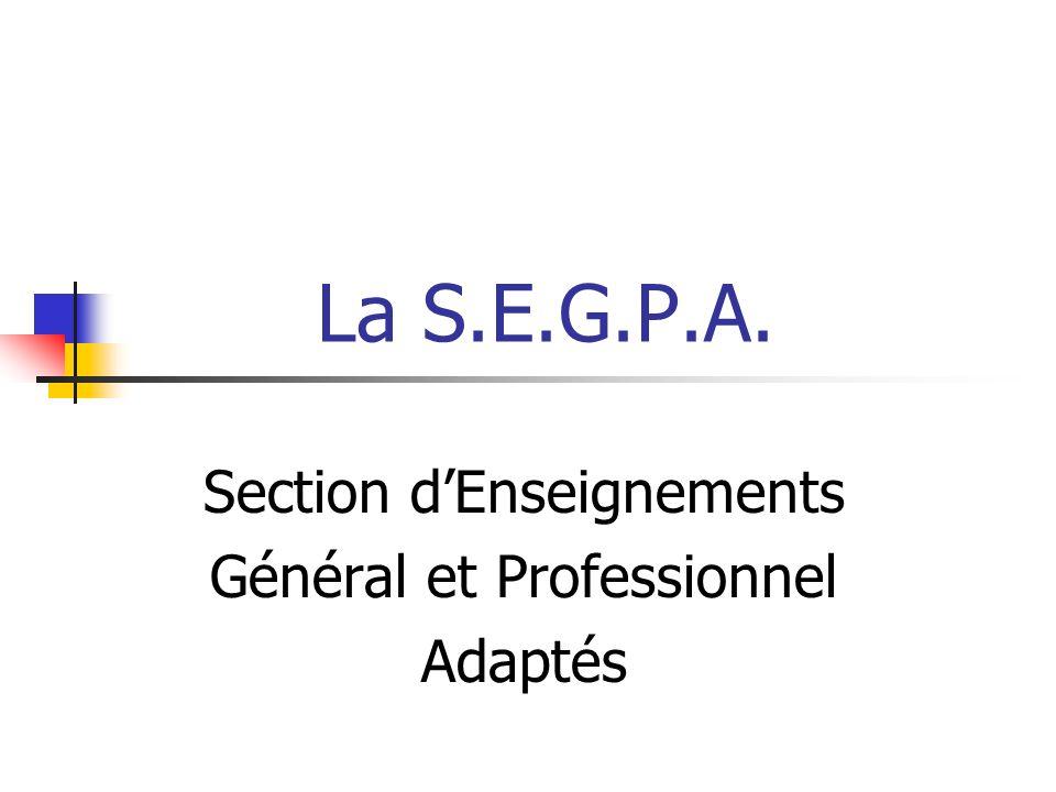 La S.E.G.P.A. Section dEnseignements Général et Professionnel Adaptés
