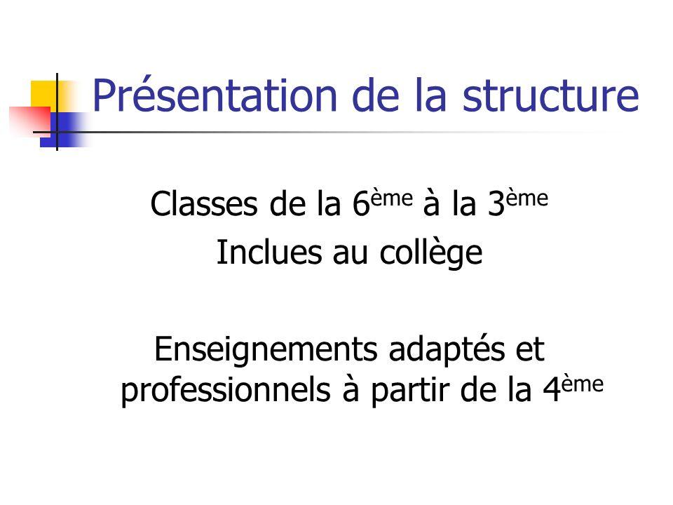 Présentation de la structure Classes de la 6 ème à la 3 ème Inclues au collège Enseignements adaptés et professionnels à partir de la 4 ème
