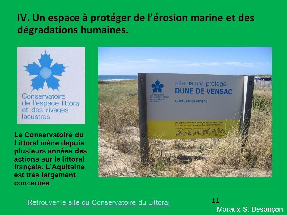 IV. Un espace à protéger de lérosion marine et des dégradations humaines. Le Conservatoire du Littoral mène depuis plusieurs années des actions sur le