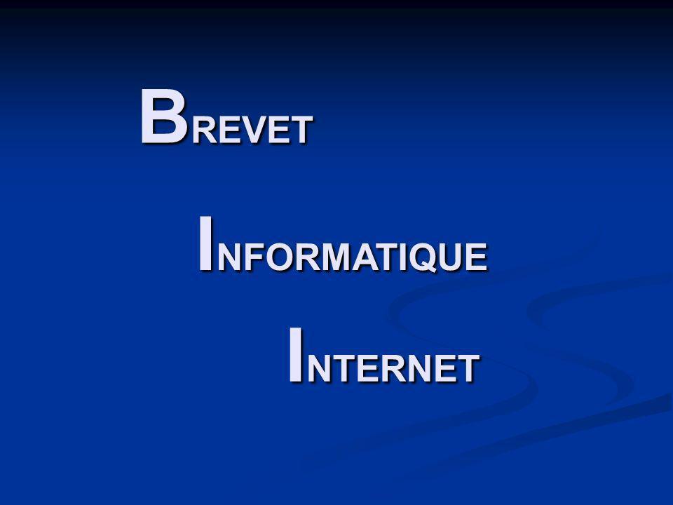 B REVET I NFORMATIQUE I NTERNET