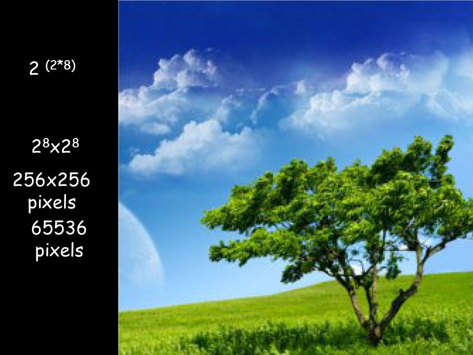 256x256 pixels 65536 pixels 2 8 x2 8 2 (2*8)