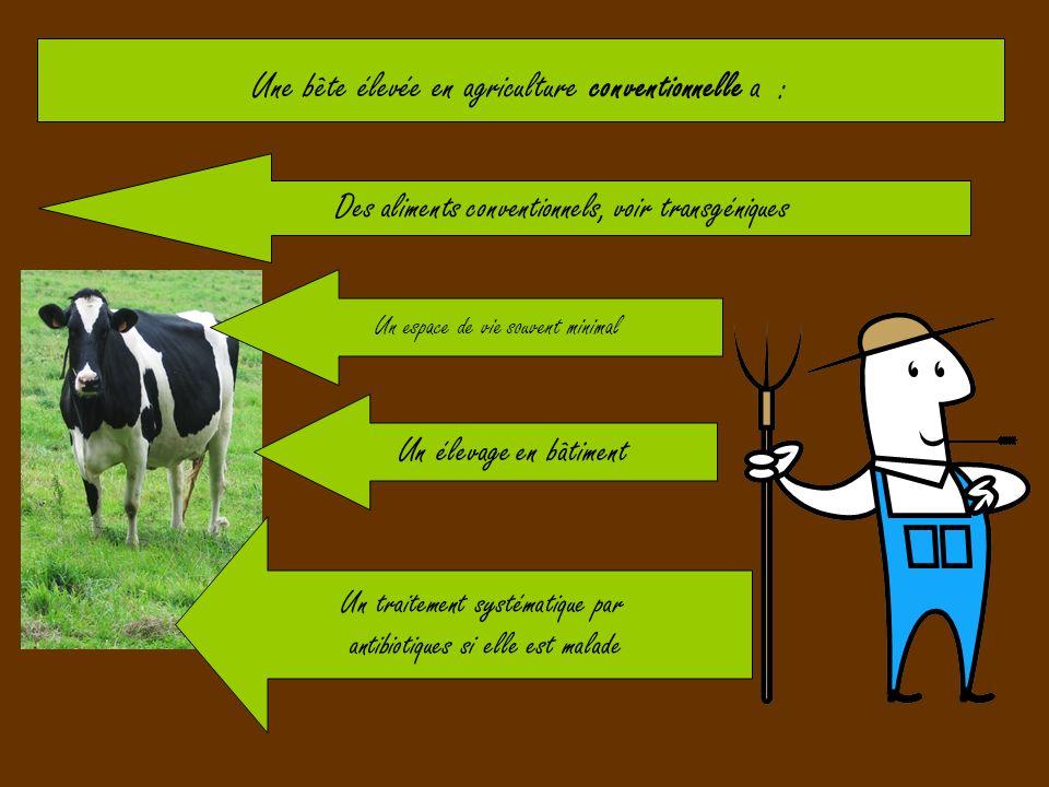 Une bête élevée en agriculture conventionnelle a : Des aliments conventionnels, voir transgéniques Un espace de vie souvent minimal Un élevage en bâti