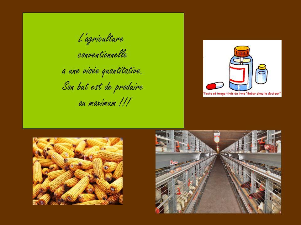 Lagriculture conventionnelle a une visée quantitative. Son but est de produire au maximum !!!