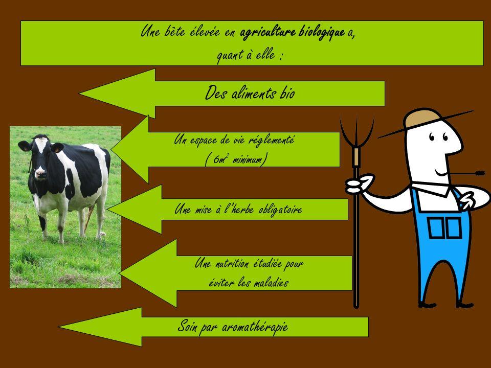 Une bête élevée en agriculture biologique a, quant à elle : Des aliments bio Un espace de vie réglementé ( 6m 2 minimum) Soin par aromathérapie Une nu