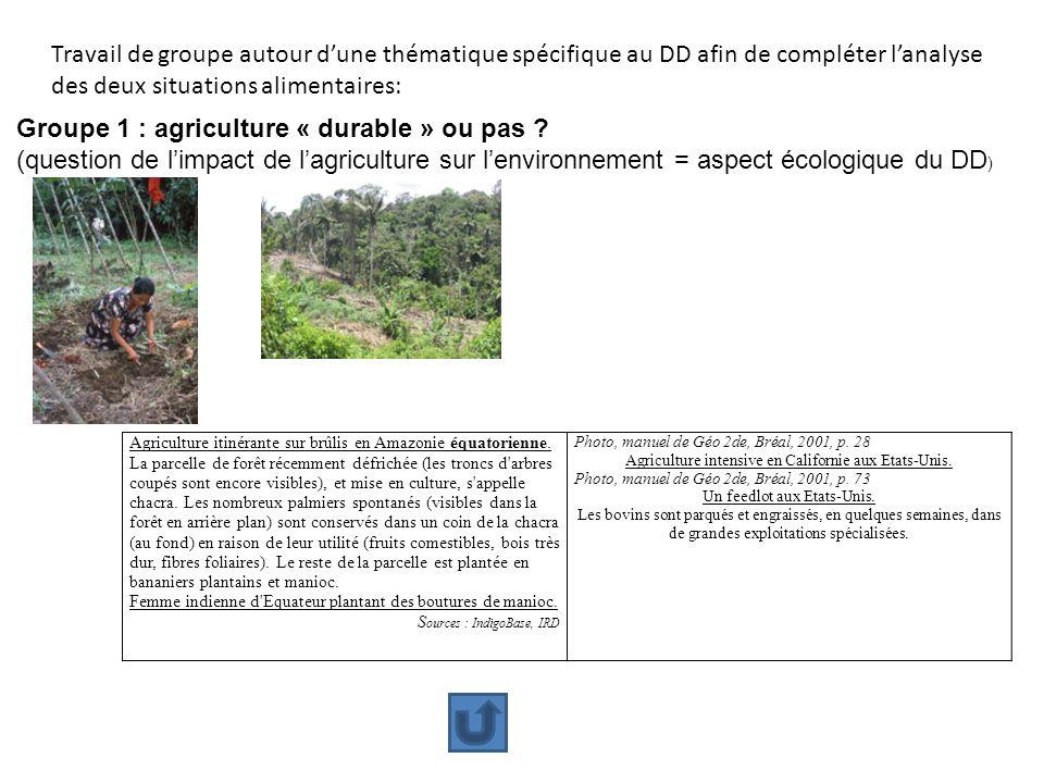 Travail de groupe autour dune thématique spécifique au DD afin de compléter lanalyse des deux situations alimentaires: Groupe 1 : agriculture « durabl