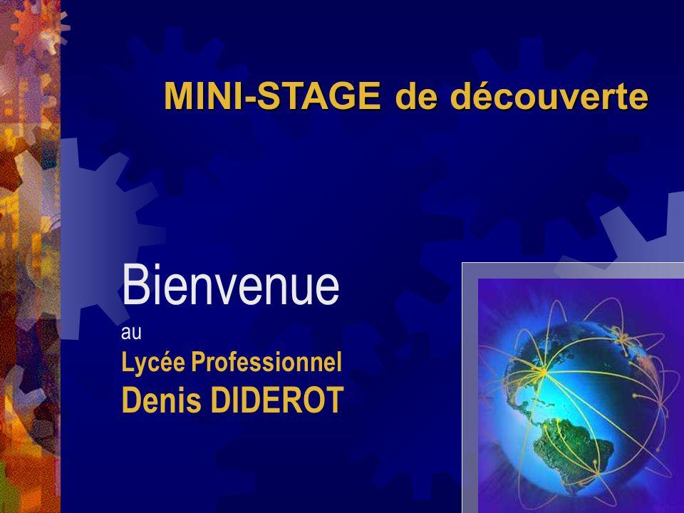 MINI-STAGE de découverte Bienvenue au Lycée Professionnel Denis DIDEROT