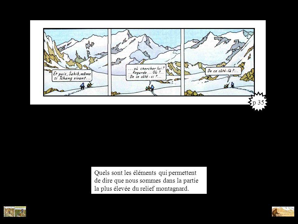 Quels sont les éléments qui permettent de dire que nous sommes dans la partie la plus élevée du relief montagnard. p 35