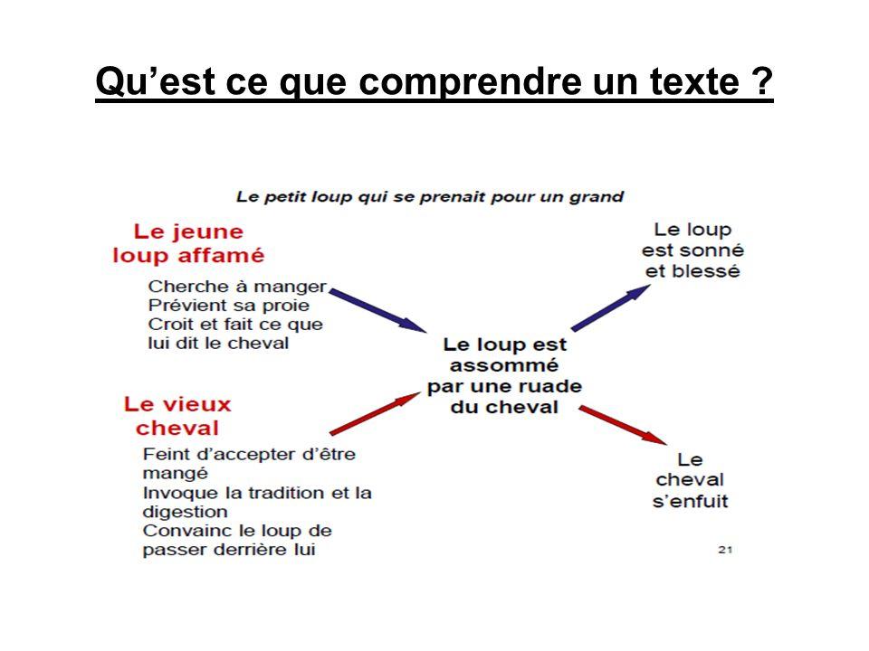 Quest ce que comprendre un texte ?