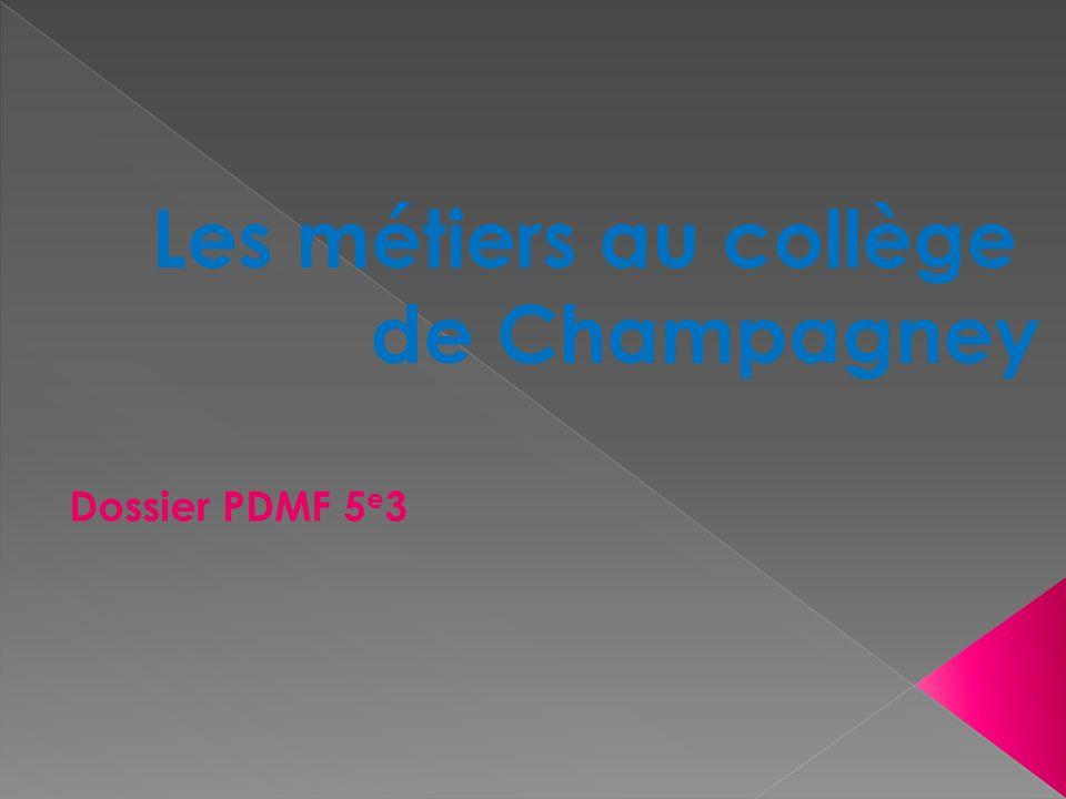 Les métiers au collège de Champagney Dossier PDMF 5 e 3