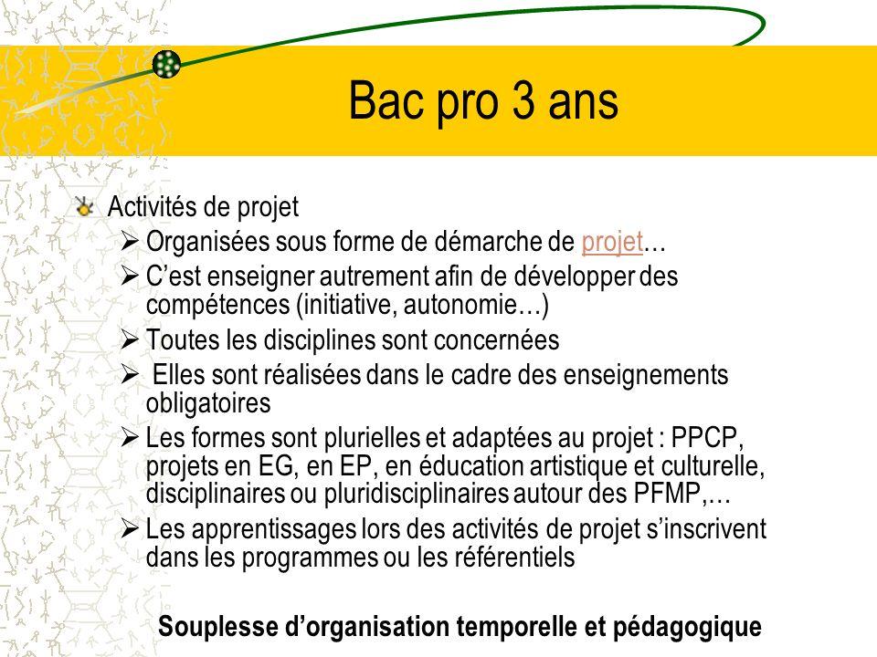 Bac pro 3 ans Activités de projet Organisées sous forme de démarche de projet…projet Cest enseigner autrement afin de développer des compétences (init
