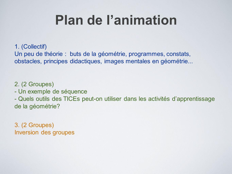 Plan de lanimation 1. (Collectif) Un peu de théorie : buts de la géométrie, programmes, constats, obstacles, principes didactiques, images mentales en