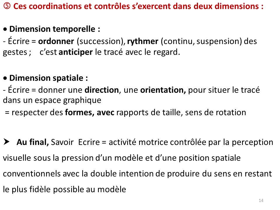 Ces coordinations et contrôles sexercent dans deux dimensions : Dimension temporelle : - Écrire = ordonner (succession), rythmer (continu, suspension)