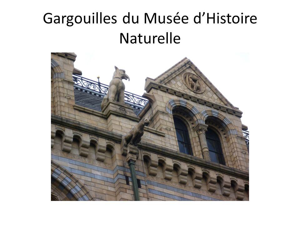 Gargouilles du Musée dHistoire Naturelle