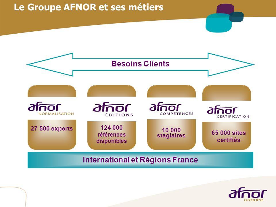1 / Pour personnaliser les références : Affichage / En-tête et pied de page Personnaliser la zone Pied de page, Faire appliquer partout Le Groupe AFNO