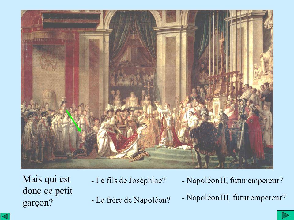 Où se trouve Laetitia, la mère de Napoléon? Dailleurs absente ce jour-là; elle était à Rome et naimait guère limpératrice Joséphine.
